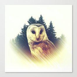 Owl of Translucence Canvas Print