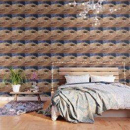 ALIEN DESERT ABDUCTION Wallpaper