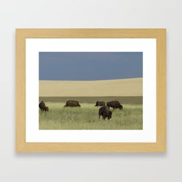 Green Yellow Blue & Bison Framed Art Print