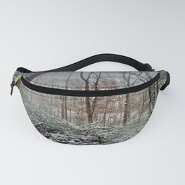 Dreamy Snow Fanny Pack