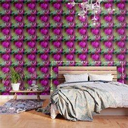Confession Of Love Wallpaper