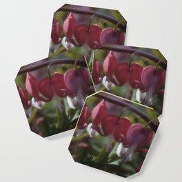 Flower Garden XXVII Coaster