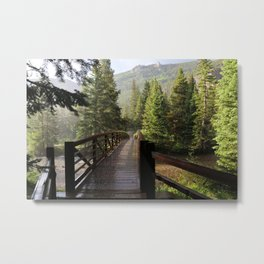 Summer Hail Metal Print