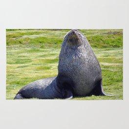 Fur Seal Rug