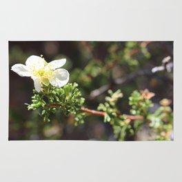 Peaceful Flower Rug