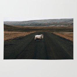 Ram Crossing II / Iceland Rug