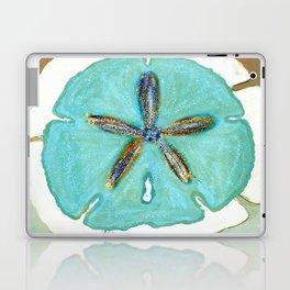 Sand Dollar Star Attraction Laptop & iPad Skin