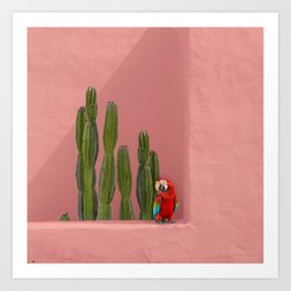 Macaw in Mexico Art Print