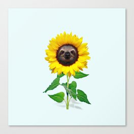 Slothflower Canvas Print