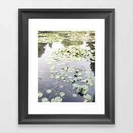 Monet's Water Lilies Framed Art Print