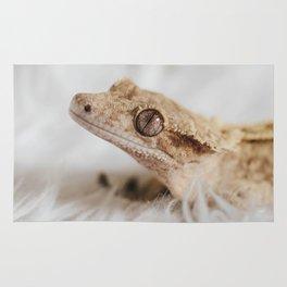 Little Dragon Rug