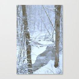 Towson Run Canvas Print