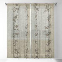 Bee Line Sheer Curtain
