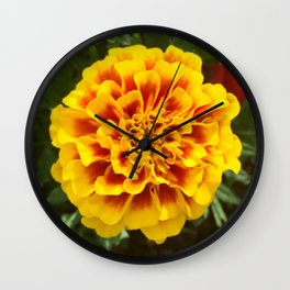 Marigold Wall Clock