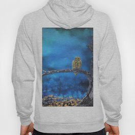 Owlie- The protector of the Forest Hoody