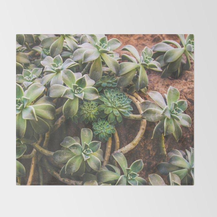 Botanical Gardens - Succulent #882 Throw Blanket