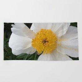 White Beauty by Teresa Thompson Beach Towel