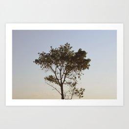 5. Tree Art Print