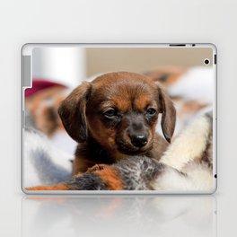 Bridgit 5 Laptop & iPad Skin
