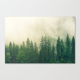 Majestic Forest Canvas Print
