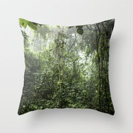 Dark Green Vines Hanging in the Misty Rainforest of Nicaragua at the Chocoyero-El Brujo Nature Reser Throw Pillow