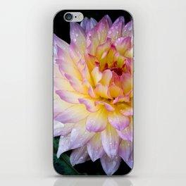 Dahlia Debutante iPhone Skin