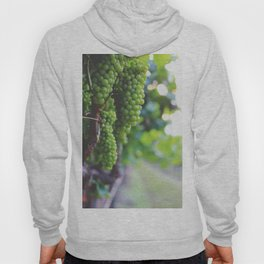 Drink More Wine in Napa Hoody