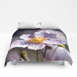 Pretty in White and Purple Comforters