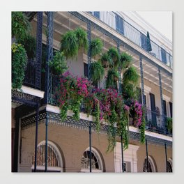 New Orleans Florals Canvas Print