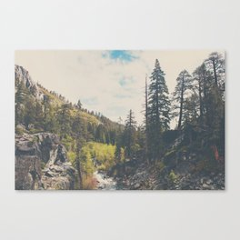 into the wild ...  Canvas Print