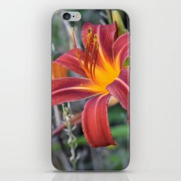 Orange Lily iPhone Skin