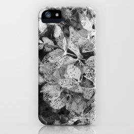 Winter Hydrangea in Black and White iPhone Case