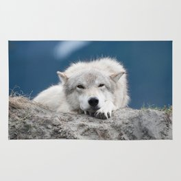Sleepy Wolf Rug