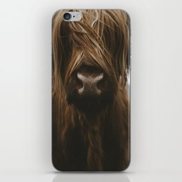 Scottish Highland Cattle iPhone Skin