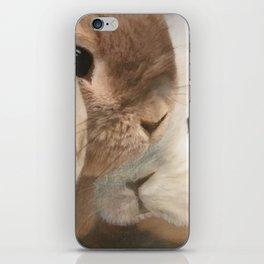 SomeBunny Loves you! iPhone Skin