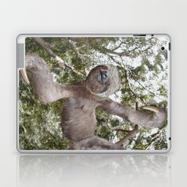 Sloth, A Real Tree Hugger Laptop & iPad Skin