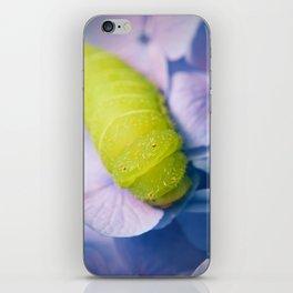 Actias Luna Larva on Hydrangea Nature Photo iPhone Skin