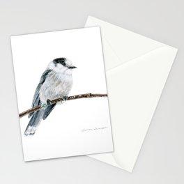 Gray Jay by Teresa Thompson Stationery Cards