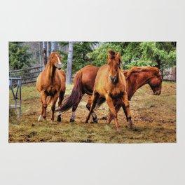 Horse Play Rug