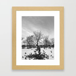 Old Man and Pigeons Framed Art Print