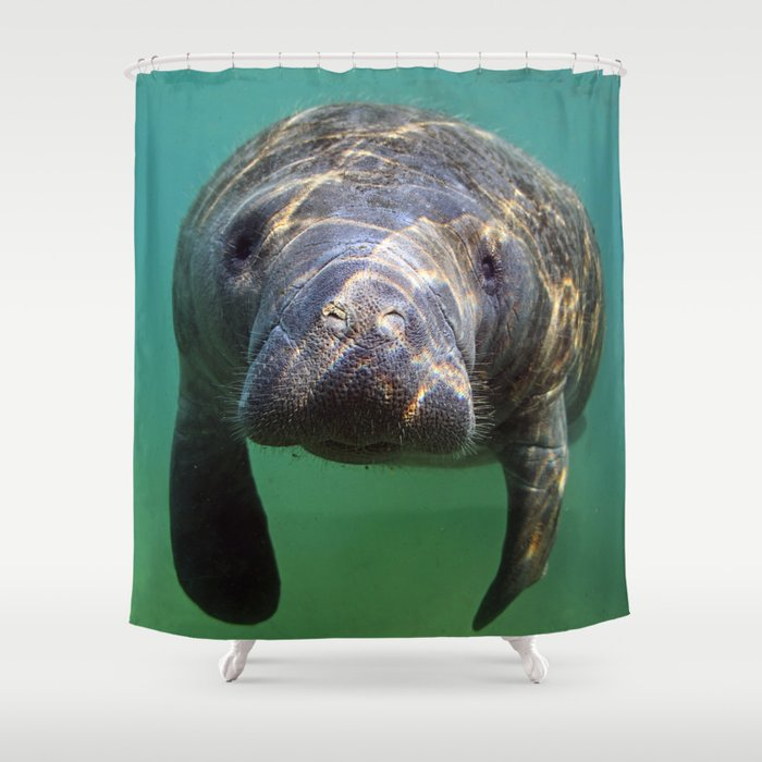 Charmant Little Manatee Shower Curtain