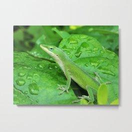 Mr. Lizard is Watching You Metal Print