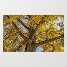 L'albero di Ferrara Rug