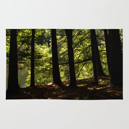 Stand of Trees Rug