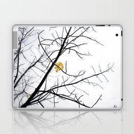 Clinging Laptop & iPad Skin