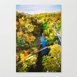 Autumn 20 Canvas Print