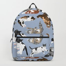 Lounging Cats in Blue Backpack