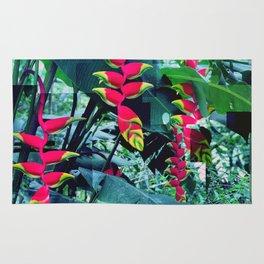 Colorful garden Rug