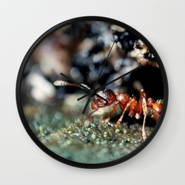Red ant Wall Clock