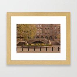 American Museum of Natural History, New York City Framed Art Print